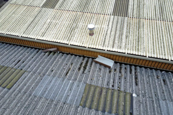 Roof Inspection / Dilapidation